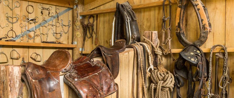 Matériel d'écurie et d'équipement cheval